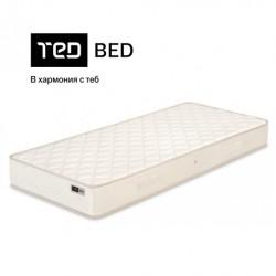 ТЕД - Awa 19cm