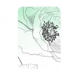 Долен чаршаф щампа - Скарлет